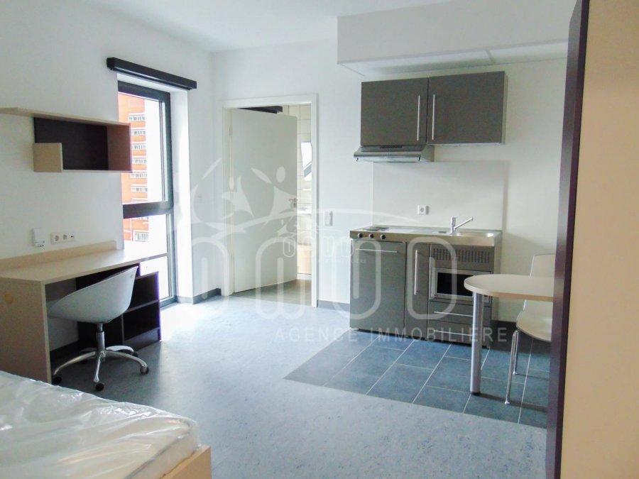 louer studio 0 chambre 27 m² esch-sur-alzette photo 2