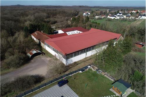 acheter entrepôt 0 pièce 3503 m² brettnach photo 4