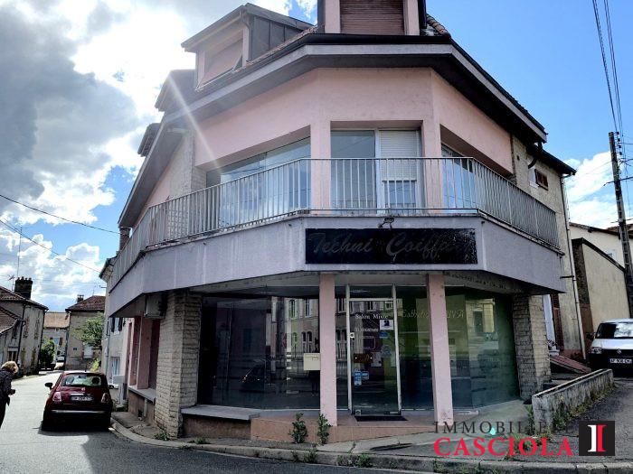 acheter immeuble de rapport 0 pièce 130 m² thiaucourt-regniéville photo 1