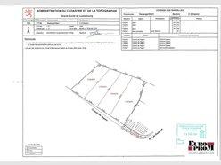 Terrain à vendre à Ospern - Réf. 4818074