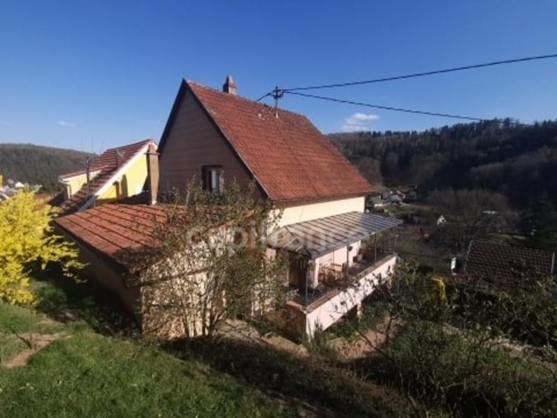 acheter maison individuelle 4 pièces 95 m² wingen-sur-moder photo 2