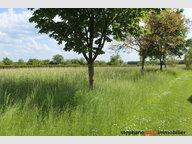 Terrain constructible à vendre à Mouaville - Réf. 6401434