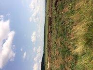 Terrain constructible à vendre à Vernéville - Réf. 5222298