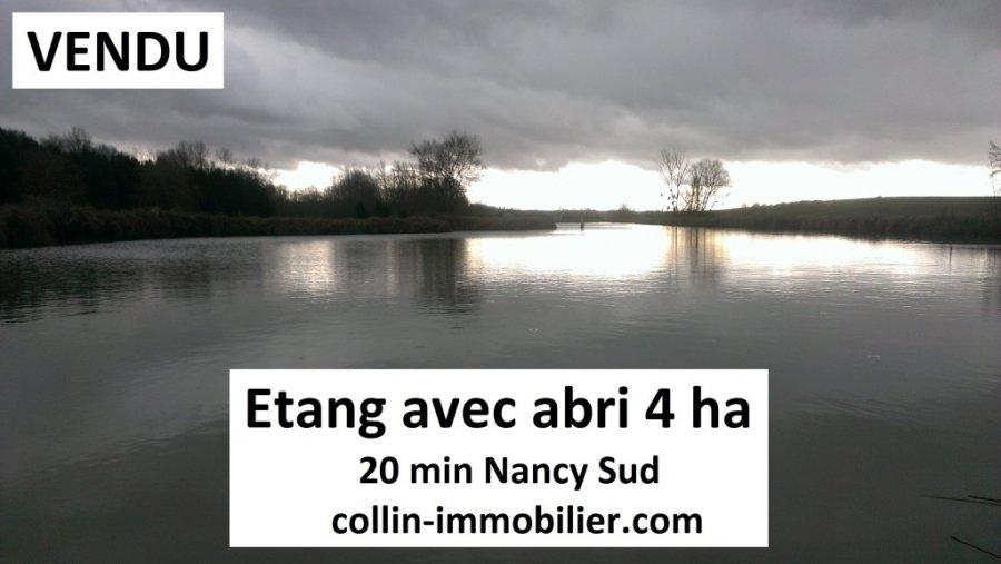 acheter terrain constructible 0 pièce 40000 m² nancy photo 1