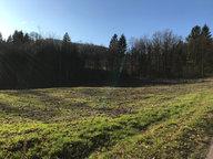 Terrain constructible à vendre à Saint-Nabord - Réf. 6661290