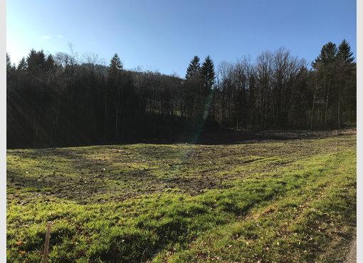Terrain constructible à vendre à Saint-Nabord (FR) - Réf. 6661290