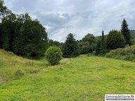 Terrain constructible à vendre à Saint-Dié-des-Vosges - Réf. 7271594