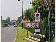 Maison à louer F6 à Noyelles-lès-Seclin - Réf. 5000618