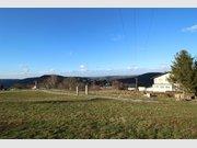 Terrain constructible à vendre à Sarrebourg - Réf. 6659498