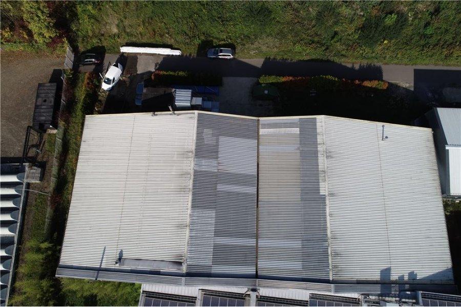 lagerfläche kaufen 0 zimmer 1150 m² beckingen foto 3