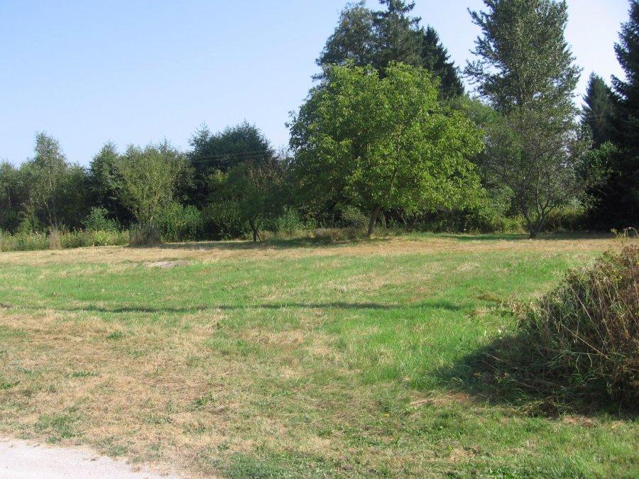 acheter terrain constructible 0 pièce 0 m² la bourgonce photo 1