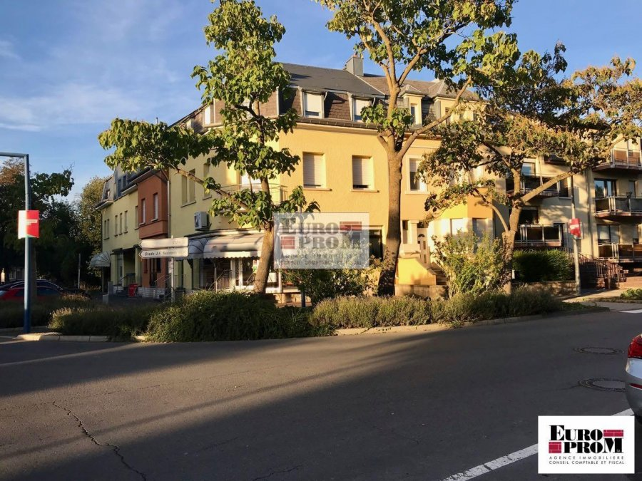 acheter local commercial 2 chambres 370 m² dudelange photo 1