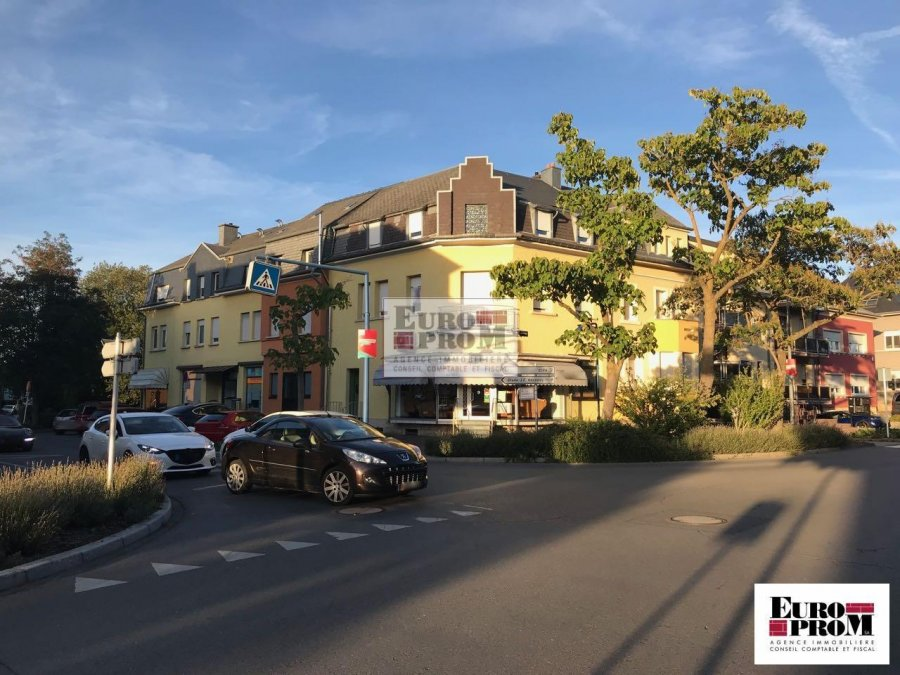 acheter local commercial 2 chambres 370 m² dudelange photo 2