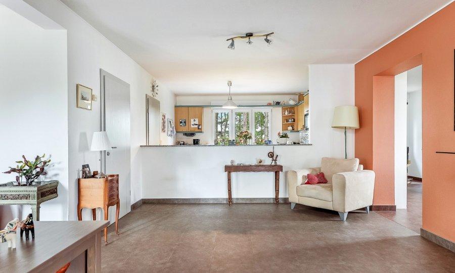 acheter maison 4 chambres 254 m² steinfort photo 3