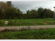 Terrain à vendre à Montreuil-Juigné - Réf. 4123834