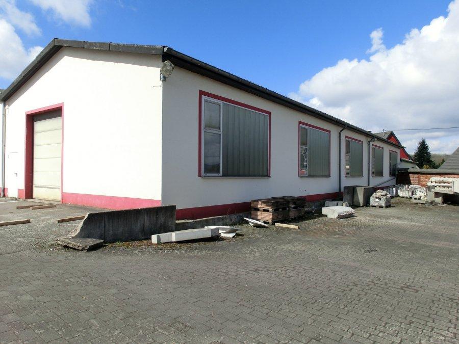 lagerfläche kaufen 0 zimmer 367 m² wadern foto 1