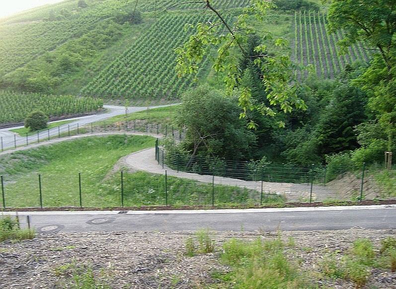 acheter terrain constructible 0 pièce 0 m² waldrach photo 3