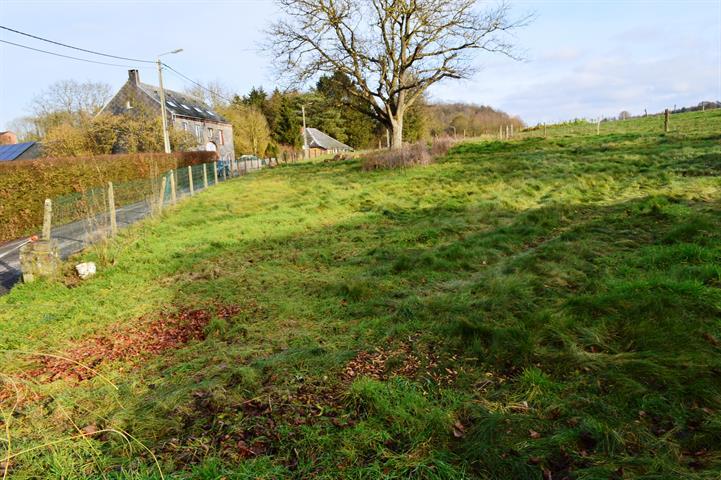 acheter terrain constructible 0 pièce 0 m² dinant photo 6