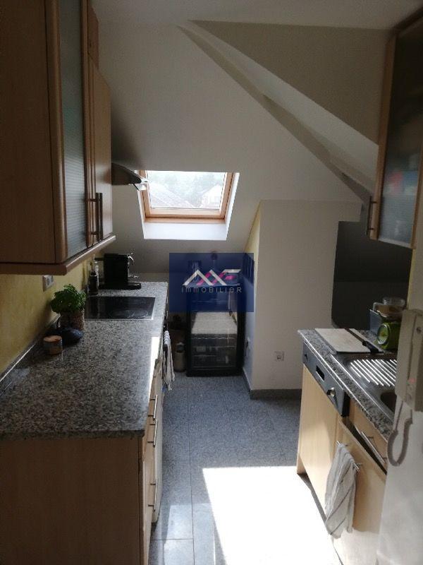 louer appartement 1 chambre 46 m² bous photo 4
