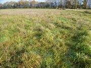 Terrain constructible à vendre à Guémené-Penfao - Réf. 6034906