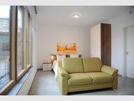 Studio à louer 1 Chambre à Luxembourg-Gasperich - Réf. 6705114