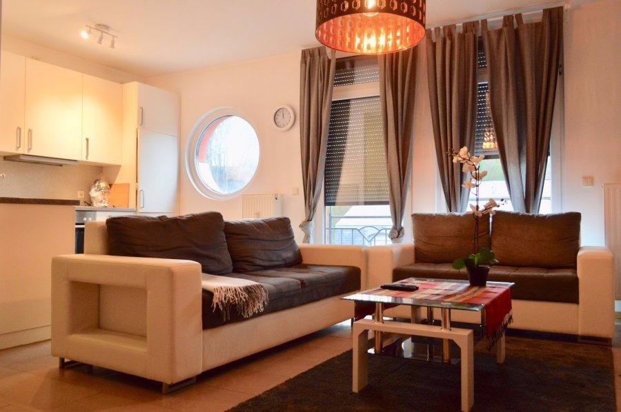 louer appartement 1 chambre 60 m² altwies photo 1