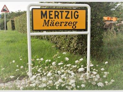Haus zum Kauf 8 Zimmer in Mertzig - Ref. 7309290