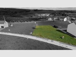 Terrain constructible à vendre à Bertogne - Réf. 6560490