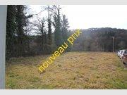 Gewerbliches Grundstück zum Kauf in Bollendorf - Ref. 5102570