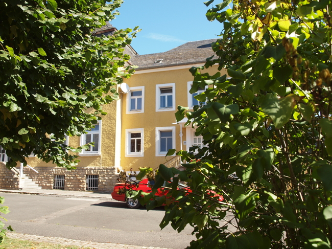 investment building for buy 17 rooms 487 m² körperich photo 2