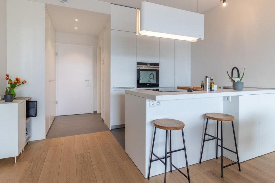 acheter appartement 1 chambre 62 m² luxembourg photo 6