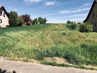 Terrain constructible à vendre à Sarralbe - Réf. 6367226