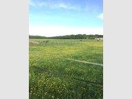 Terrain constructible à vendre à Luppy - Réf. 5859834