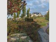 Terrain constructible à vendre à Wincheringen - Réf. 6543866