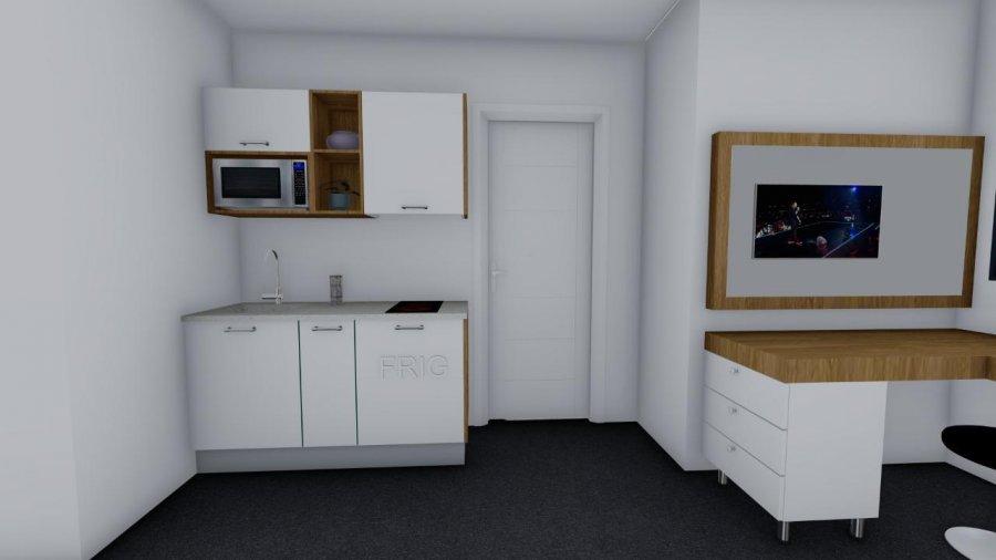 acheter immeuble de rapport 14 chambres 350 m² dudelange photo 6
