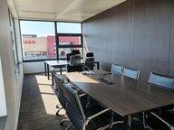 Office for rent in Leudelange - Ref. 6786315