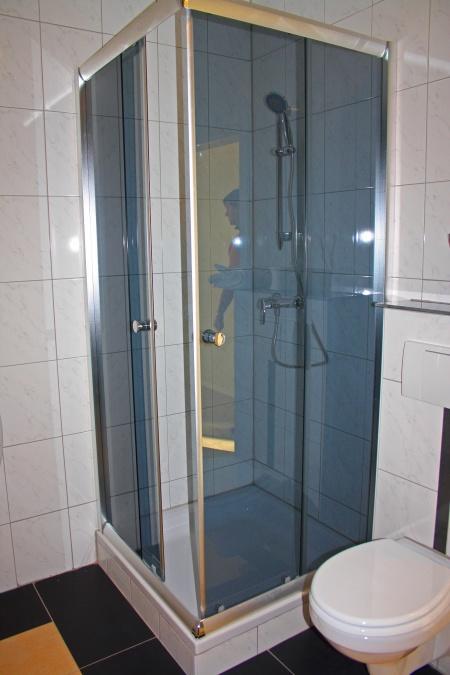 acheter maison 12 pièces 432 m² nalbach photo 4