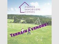 Terrain constructible à vendre à Aumetz - Réf. 6796571