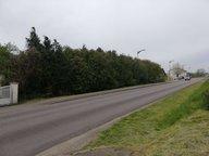 Terrain constructible à vendre à Bouligny - Réf. 7192091