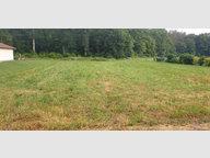 Terrain constructible à vendre à Girecourt-sur-Durbion - Réf. 7100459