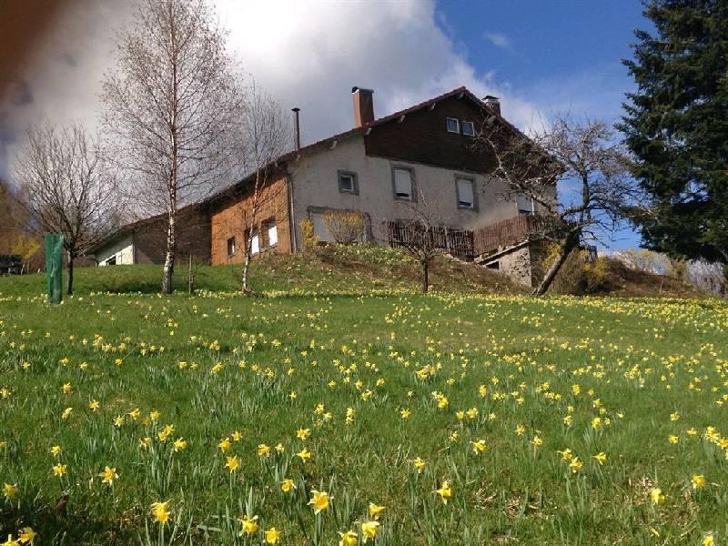 acheter maison 10 pièces 332 m² la bresse photo 1