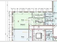 Bureau à vendre 1 Chambre à Wemperhardt - Réf. 6607163