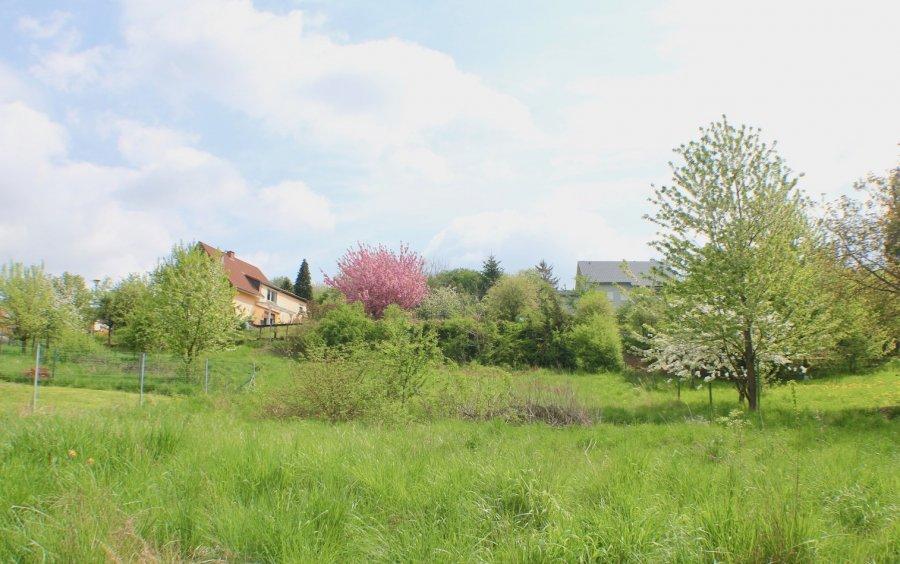 doppelhaushälfte kaufen 7 zimmer 180 m² freudenburg foto 4