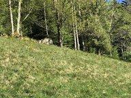 Terrain constructible à vendre à La Bresse - Réf. 6793531