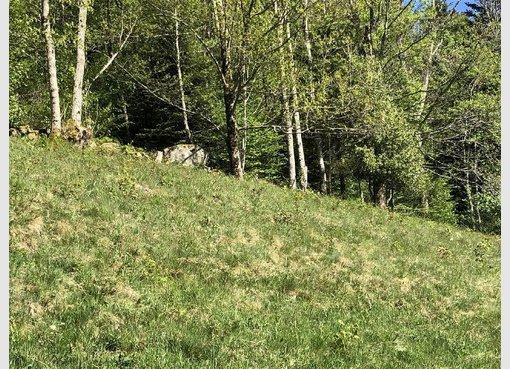 Terrain constructible à vendre à La Bresse (FR) - Réf. 6793531