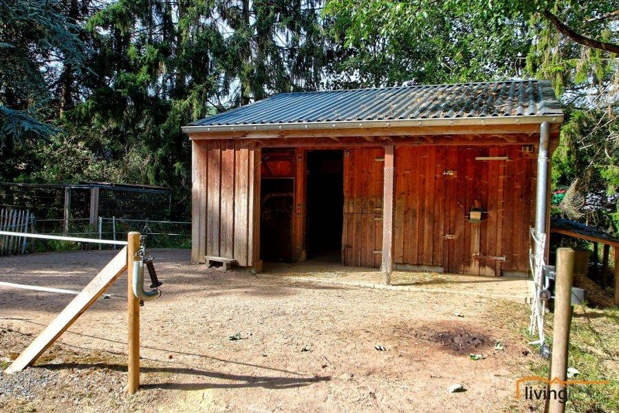Maison à vendre 4 chambres à Bockholz (goesdorf)