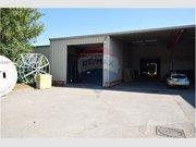 Warehouse for rent in Bertrange - Ref. 6484811