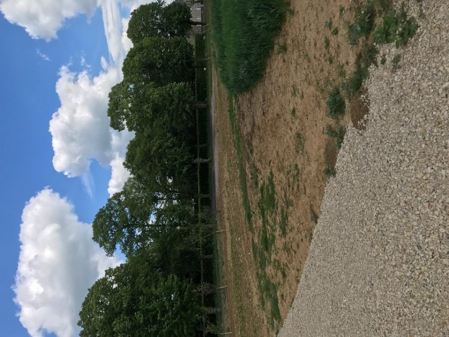 building land for buy 0 room 0 m² yutz photo 1