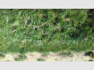 Terrain constructible à vendre à Stiring-Wendel - Réf. 6739035