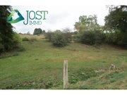 Terrain constructible à vendre à Wincrange - Réf. 6577243